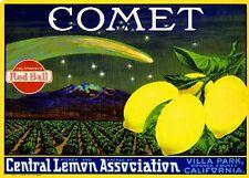Villa Park Comet Lemon Citrus Fruit Crate Label Art Print
