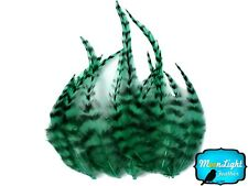 Hair Feathers 1 Dozen Short Peacock Green Grizzly Rooster Hair Extension Feather