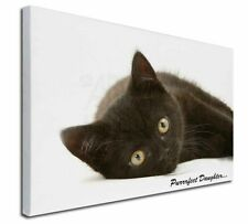 More details for black kitten 'purrrfect daughter' x-large 30