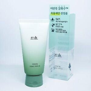 HANYUL Pure Artemisia Calming Foam Cleanser 120g Moisturizing Soothing K-Beauty