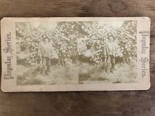 Antique Stereoview Card Uncle Tom After Scraps Popular Series Photo Photograph