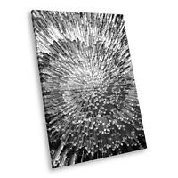 AB283 Black White Abstract Portrait Canvas Picture Print Wall Art Spiral Cool