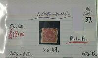 NEWFOUNDLAND ROSE-RED 1/2c DOG STAMP MLH
