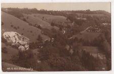 White Hill Bletchingley Surrey 1928 RP Postcard, B700