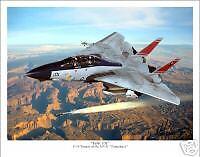 F-14 Tomcat  Aviation Art Print