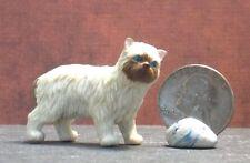 Dollhouse Miniature Pet Cat Birman Animals 1:12 1 inch scale G34 Dollys Gallery