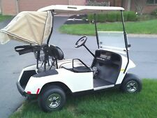 2007 EZ-GO TXT 36 Volt Electric Golf Cart - Charger Included - Nice Condition!