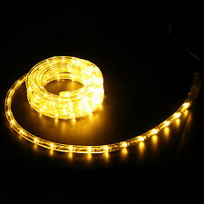 10ft LED Rope Light In/Outdoor Home Party 110V Christmas Decoration Warm White