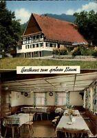 7591 Seebach Grimmerswald AK Gasthaus Zum Grünen Baum 1971 color Mehrbild-AK