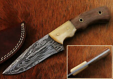 Beautiful Damascus Handmade Hunting Knife with Rose Wood Handle (CKW12)