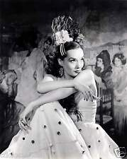 Lupe Velez / The Mexican Spitfire 8 x 10 Photo Picture