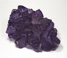 Purple Fluorite - Cave In Rock District, Illinois, United States of America