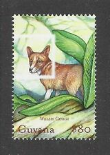 Dog Art Body Study Portrait Postage Stamp Pembroke Welsh Corgi Guyana Mnh