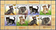 2017. Belarus. Children philately. Kittens. M/sheet. MNH