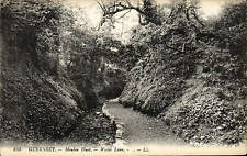 Guernsey. Moulin Huet, Water Lane by LL / Levy # 165.