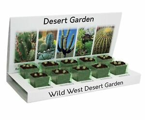 Cactus & Succulents Eco Grow Your Own Kit 100% Recyclable 5 Varieties to Grow