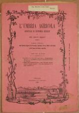 L'UMBRIA AGRICOLA 15 30 AGOSTO 1890 PATATE INGHILTERRA CONEGLIANO BELGRADO VINO