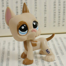 "IN HAND LPS Littlest pet shop MINI 2"" FIGURE TOY Great Dane patches #1647"