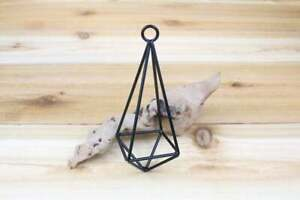 1 Hanging Metal Iron Pendant for Air Plants - Geometric Hanging Holder Container