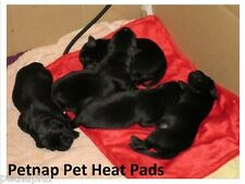 Dog Heated Electric Blanket, Cat Bed, Pet Mat, Whelping, Puppy HEAT PAD 33x44cm