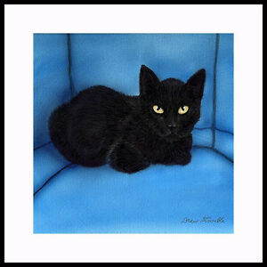 """BLACK ON BLUE"" BLACK CAT FRAMED OPEN ED. PRINT BY DREW STROUBLE CATMANDREW"