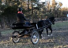 Cart/jogger to suit pony