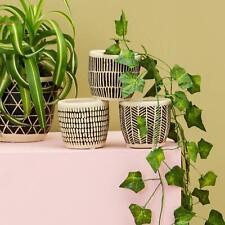 Sass & Belle Scandi Boho Mini Cement Planters - Set Of 3