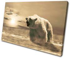 Animals Polar Bear SINGLE DOEK WALL ART foto afdrukken