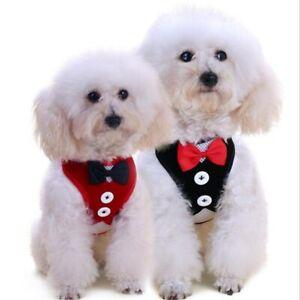 Dog Vest Dog Harness Leash Set Cat Pet Puppy Chest Strap Dress Nylon Breathable