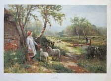 Ernest Walbourn print , Spring Lambs -46x69cm, old sheep posters