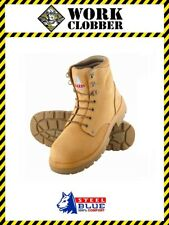 Steel Blue Argyle Wheat Nubuck Leather Lace Up Safety Boot 312102 NEW IN BOX!