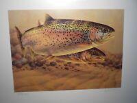 "Greg Alexander 1987 Minnesota Trout Stamp Print ""Rainbow Trout"" Signed Ltd Ed"