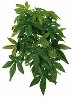 Silk Hanging Plant For Terrarium Reptile Fish Tank Abutilon / Ficus 30 Or 50cm