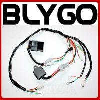 Wiring Harness Loom IGNITION CDI CONTROL UNIT COIL YAMAHA PW50 PY50 DIRT BIKE