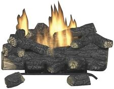 18 in. Vent Free Propane Fireplace Logs Insert Heater Remote Control Convert Kit