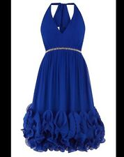 BNWT 🌹Coast 🌹Size 14 Gloria Blue Prom Evening Cruise Wedding Dress New