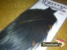 Whiting Farms Black Spey Hackle Rooster Cape Whole Tying Neck