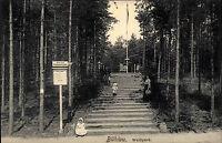 Bühlau Dresden Sachsen AK ~1910 Waldpark Kinder Children am Kinderspielplatz