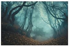 Haunted FOREST Backdrop Banner Props Halloween NEW Haunted House Decor
