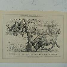 """7x10 """"PUNCH CARTOON 1922 la stessa struttura dell' Irlanda bovini distinta / Canada"""