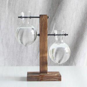 Hydroponic Plant Vases Vintage Flower Pot Transparent Vase Wooden Frame Glass