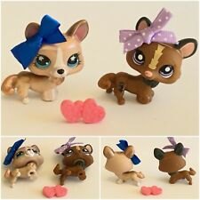 Authentic Littlest Pet Shop LOT 2 CORGI DOGS #1767 #871 Shiny Star Eyes