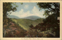Jamaica Jamaika Karibik Vintage Postcard ~1920/30 Blick auf Blue Moutain Peak