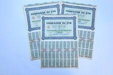 COMPAGNIE DU DYR PRODUITS CHIMIQUES ACTION DE 2500 FRANCS 1943 X 89 ACTIONS