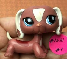 💖🐶Authentic Littlest Pet Shop #1631 Dog Dachshund +1 Random LPS Rare