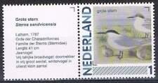 Persoonlijke zegel Vogels / Birds MNH 2791-Aa-21 + Tab/L: Grote Stern