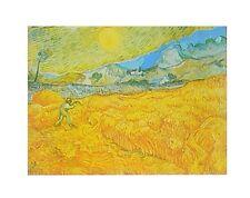 Vincent van Gogh Die Ernte Poster Kunstdruck Bild 24x30cm - Kostenloser Versand