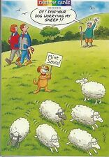 DOG WORRYING SHEEP FUNNY BIRTHDAY CARD HUMOROUS RAINBOW CARDS BY LING