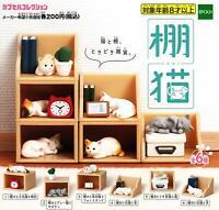 epoch shelf cat Gashapon 6 set mini figure capsule toys
