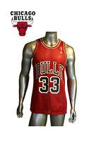 Vintage, Champion Chicago Bulls Scottie Pippen #33 NBA Basketball Jersey